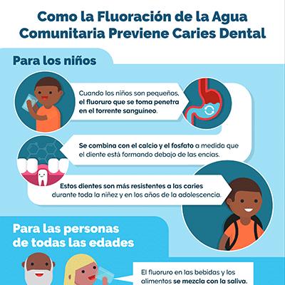 Infografia: Como la Fluoración de la Agua  Comunitaria Previene Caries Dental